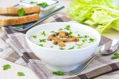 Sopa do creme do queijo macio com cogumelos, salsa e vegetais Foto de Stock Royalty Free