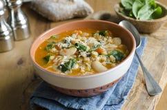 Sopa do feijão e da cevada Imagem de Stock