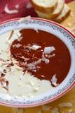 Sopa do frio de duas cores Imagem de Stock Royalty Free