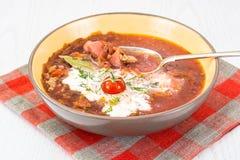 Sopa do legume fresco do vegetariano Fotografia de Stock Royalty Free