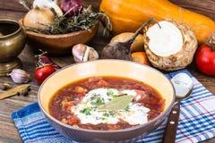 Sopa do legume fresco do vegetariano Foto de Stock