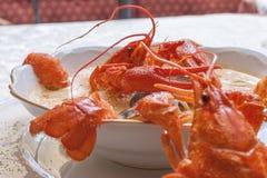 Sopa do marisco com caranguejos Fotos de Stock Royalty Free