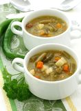 Sopa do Minestrone com feijões verdes, cenouras e pota Fotografia de Stock