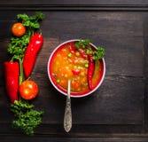 Sopa do minestrone na bacia vermelha com a colher do vintage na tabela de madeira do darkt velho Imagem de Stock