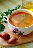 Sopa do repolho Imagens de Stock