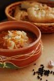Sopa do repolho do russo - shchi fotografia de stock
