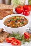Sopa do repolho e de cogumelo Imagem de Stock