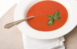 Sopa do tomate Imagem de Stock