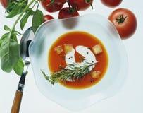 Sopa do tomate fotos de stock royalty free