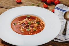 Sopa do tomate com cevada do ovo Foto de Stock Royalty Free
