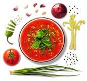 Sopa do tomate com os ingredientes isolados Imagem de Stock