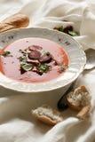 Sopa do tomate com salsa e salsicha Imagem de Stock