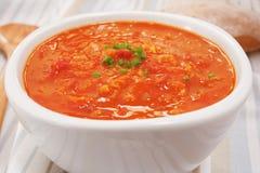 Sopa do tomate da lentilha Fotos de Stock