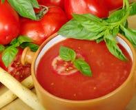 Sopa do tomate na bacia Imagens de Stock Royalty Free