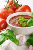 Sopa do tomate na bacia Fotografia de Stock