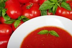 Sopa do tomate na placa branca Fotografia de Stock Royalty Free