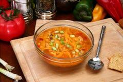 Sopa do Tortilla da galinha fotos de stock