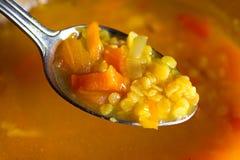 Sopa do Vegan Fotos de Stock