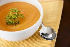 Sopa do vegetariano Fotografia de Stock