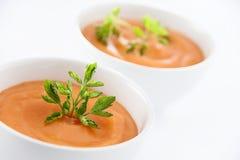 Sopa do vegetariano Fotografia de Stock Royalty Free