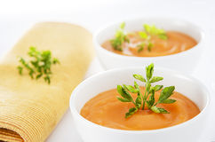 Sopa do vegetariano Imagem de Stock Royalty Free