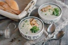 Sopa do vegetariano Imagens de Stock Royalty Free