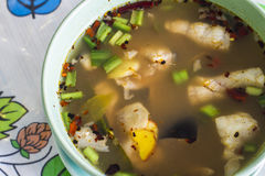 Sopa do yum de Tom com peixe-gato foto de stock royalty free