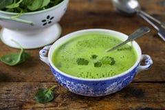 Sopa dos espinafres Fotografia de Stock