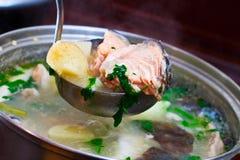 Sopa dos peixes fotografia de stock royalty free