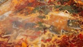 Sopa dos peixes video estoque