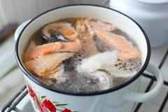 Sopa dos peixes imagens de stock