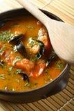 Sopa dos peixes com marisco fotografia de stock royalty free