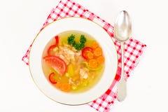 Sopa dos peixes com truta e vegetais Foto de Stock