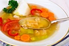 Sopa dos peixes com truta e vegetais Fotos de Stock Royalty Free