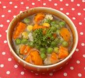 Sopa dos vegetabes Fotos de Stock