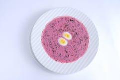 Sopa enfriada lituana con los huevos Imagen de archivo