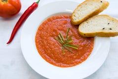 Sopa espanhola do tomate Imagens de Stock Royalty Free