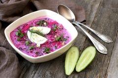 Sopa fría con las remolachas, los pepinos, el eneldo y la crema agria Imagen de archivo libre de regalías