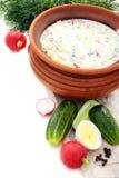 Sopa fría del yogur con los huevos, los vehículos y la carne. Imágenes de archivo libres de regalías