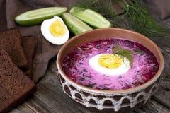 Sopa fría tradicional de la remolacha con las verduras Imagen de archivo libre de regalías