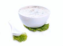 Sopa fría búlgara tradicional del pepino Imagenes de archivo
