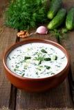 Sopa fría del verano con el yogur Foto de archivo