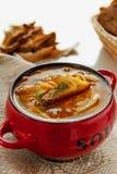 Sopa fresca com cogumelos selvagens em uma terrina vermelha foto de stock royalty free