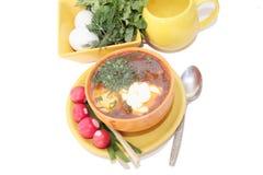 Sopa fresca con el huevo y los tomates. imagen de archivo