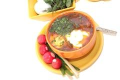 Sopa fresca con el huevo y los tomates. imagenes de archivo