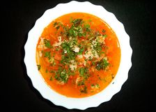 Sopa fresca con la carne asperjada con las hierbas fotografía de archivo libre de regalías