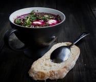 Sopa fria da beterraba com pão fotos de stock royalty free