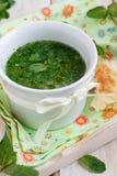 Sopa fria do pepino Imagem de Stock Royalty Free