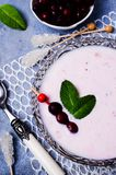 Sopa fria do rosa da leiteria fotografia de stock royalty free