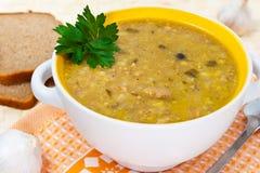 Sopa Georgian com carne e arroz Imagem de Stock